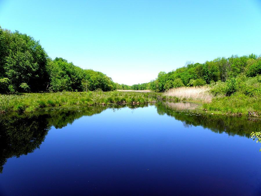 Peace And Serenity By Nature Photograph Kim Galluzzo Wozniak
