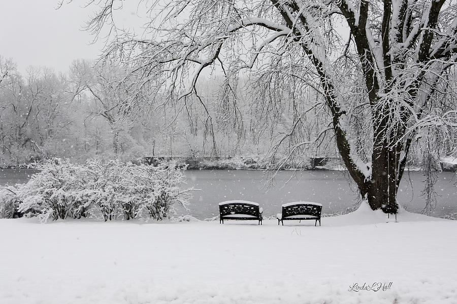 Snow Photograph - Peace of the Storm by Linda Lee Hall
