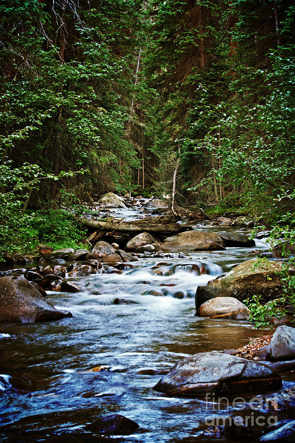Mountain Stream Photograph - Peaceful Mountain River by Lisa Holmgreen