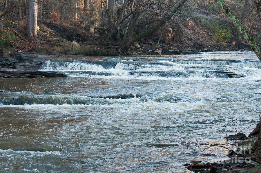 River Photograph - Peaceful River by Michael Waters