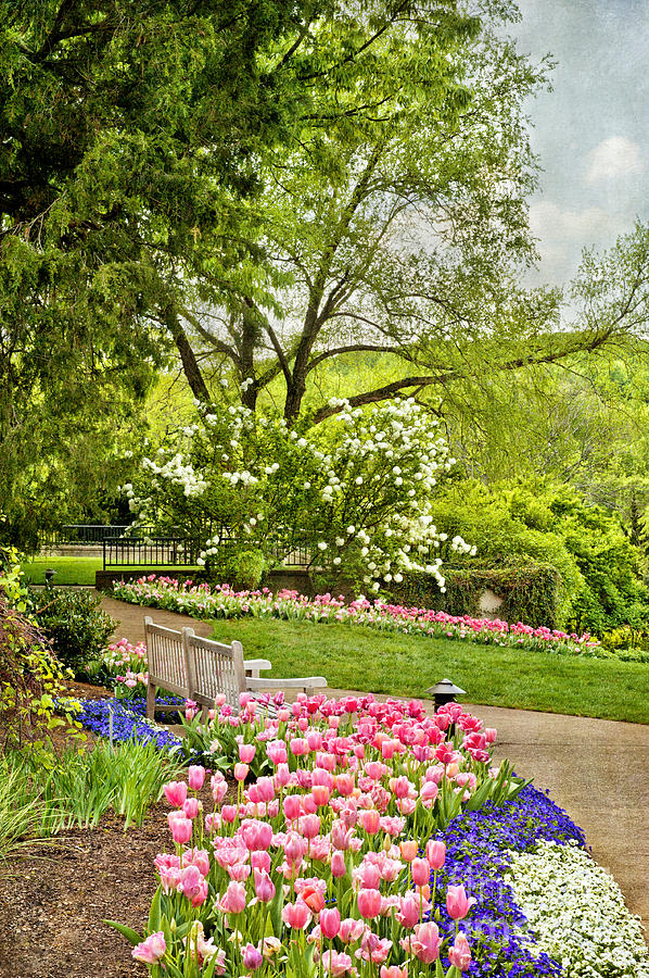 Spring Garden Photograph - Peaceful Spring Park by Cheryl Davis