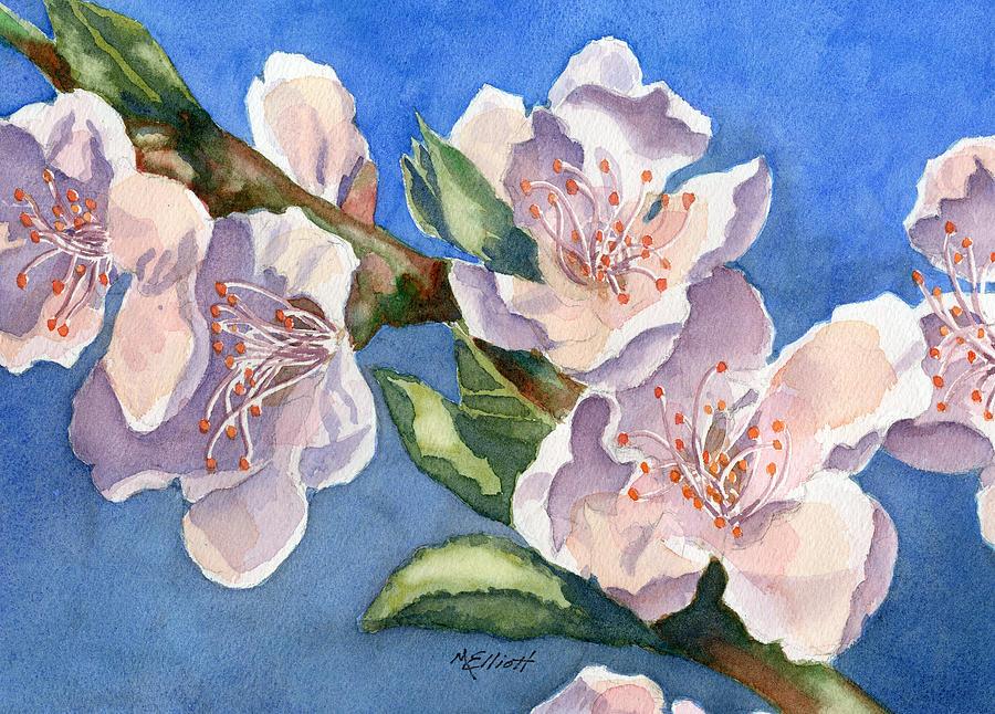 Peach Painting - Peach Blossoms by Marsha Elliott