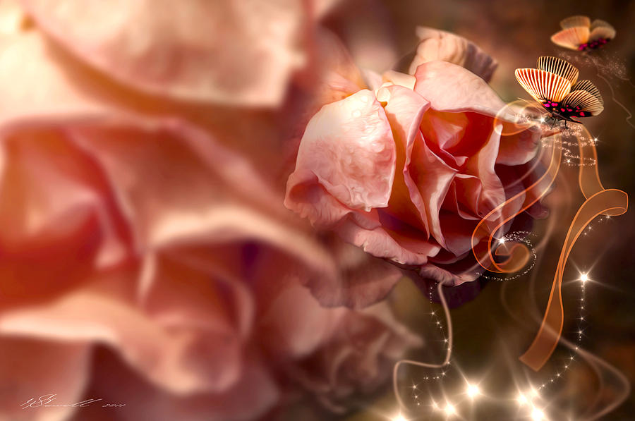 Anniversary Photograph - Peach Roses And Ribbons by Svetlana Sewell