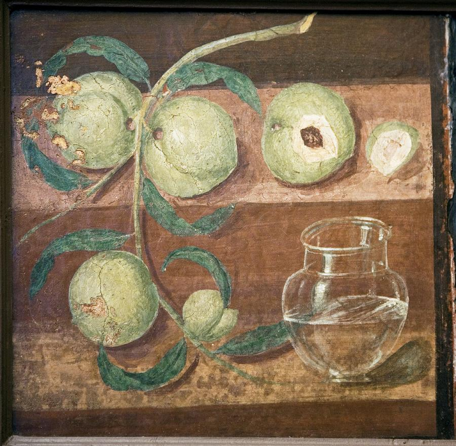 Food Photograph - Peaches And A Glass Jug, Roman Fresco by Sheila Terry
