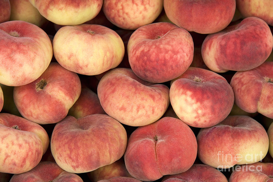 Agriculture Photograph - Peaches by Jane Rix