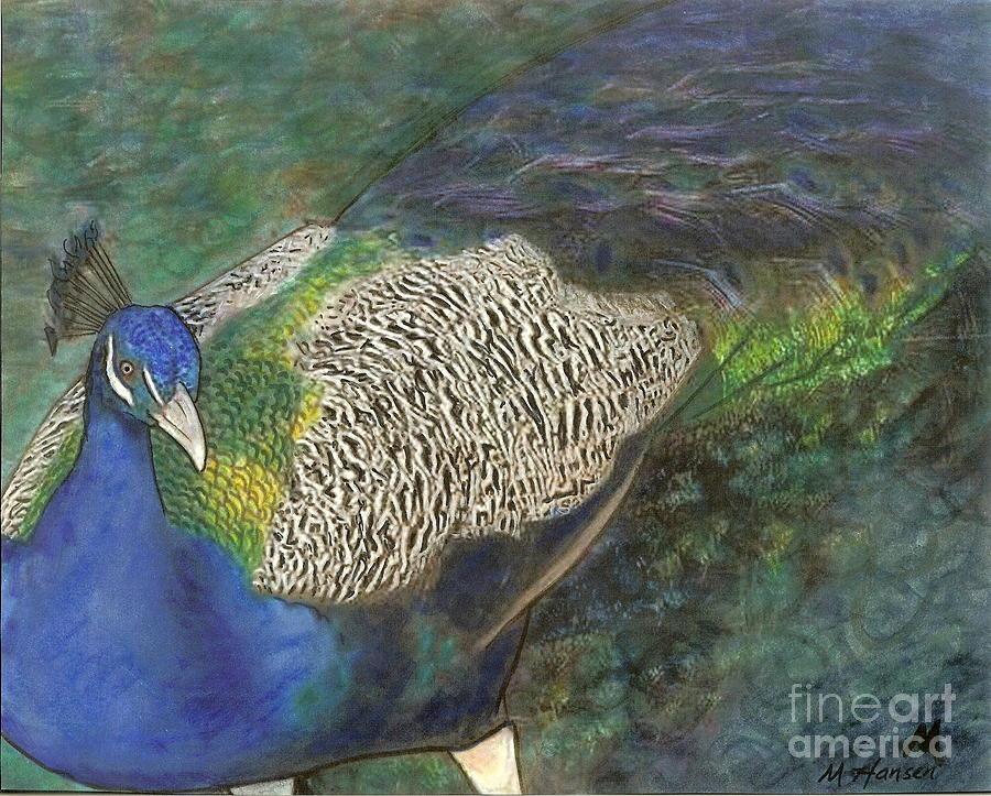 Peacock Photograph - Peacock by Mona Younavjak Hansen