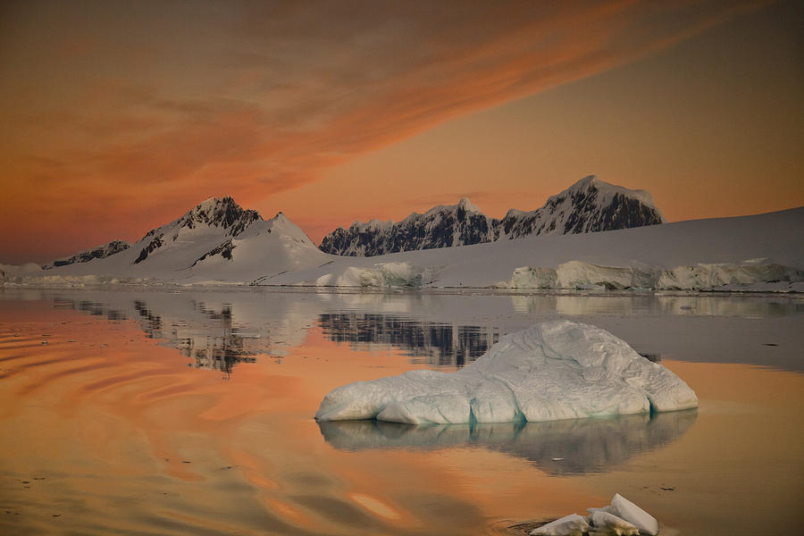 00479584 Photograph - Peaks At Sunset Wiencke Island by Colin Monteath