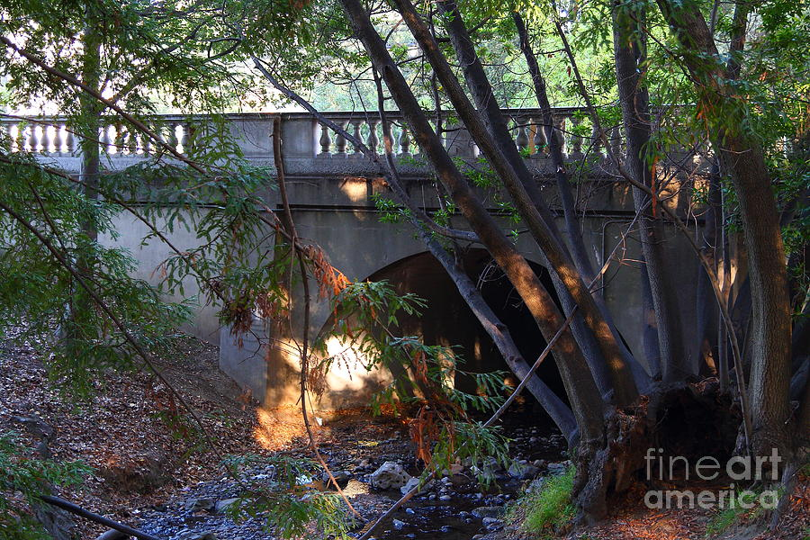 Architecture Photograph - Pedestrian Bridge And Strawberry Creek  . 7d10132 by Wingsdomain Art and Photography
