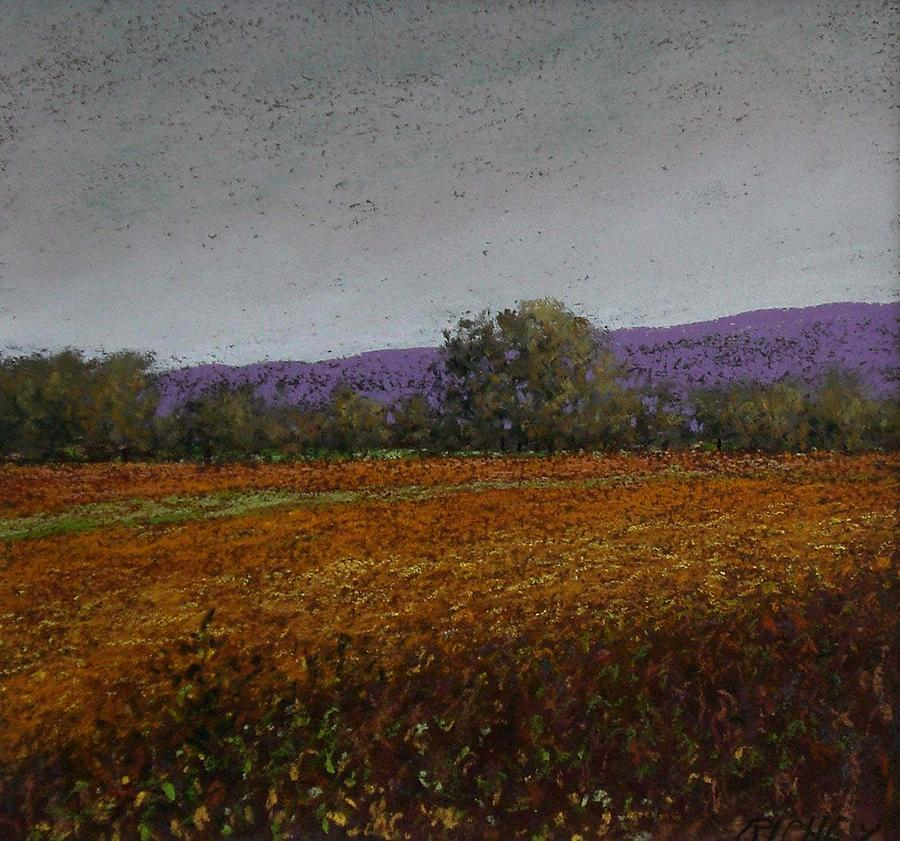 Pastel Pastel - Pennsylvania Late Summer Fields by Bob Richey