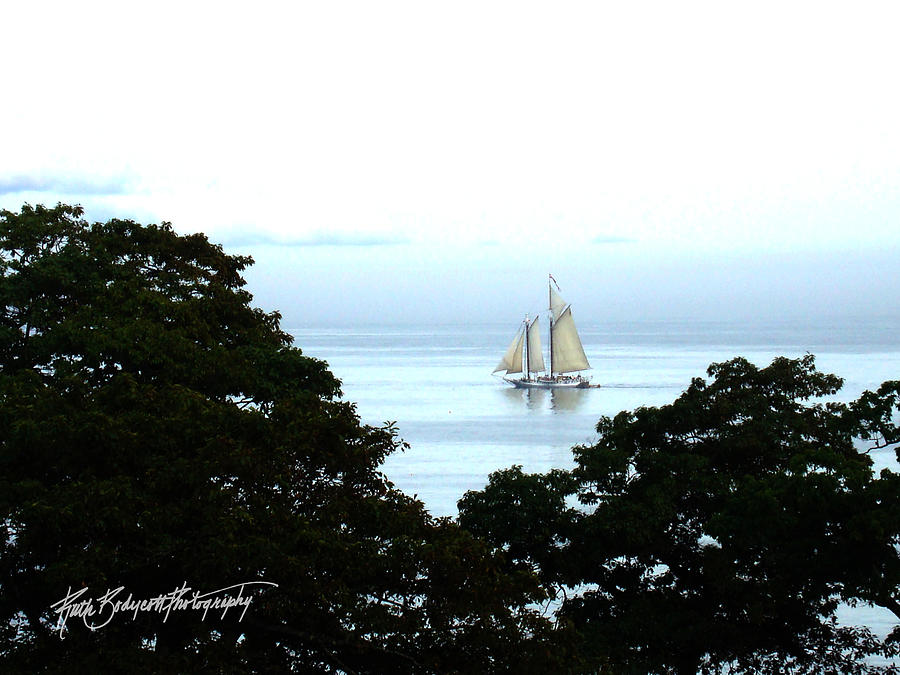 Landscape Photograph - Penobscot Bay Sailing by Ruth Bodycott