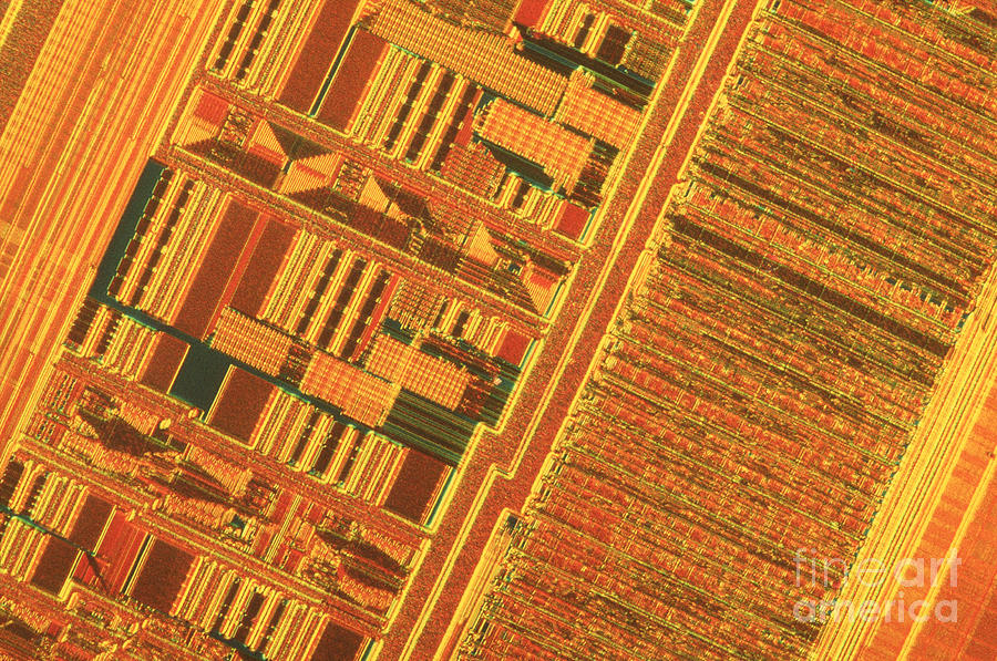 Silicon Photograph - Pentium Computer Chip by Michael W. Davidson