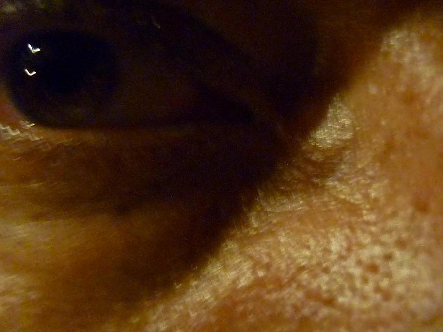 Eyes Photograph - Penumbre by Beto Machado
