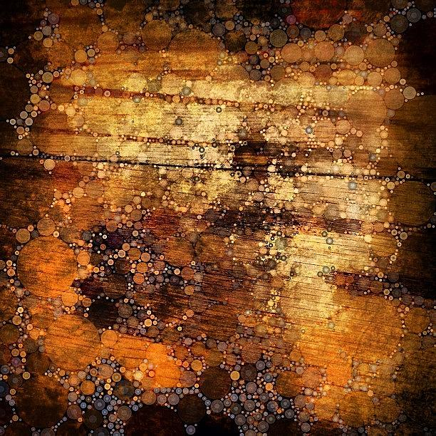 Wood Photograph - Percolated Painted Wood by Natasha Marco