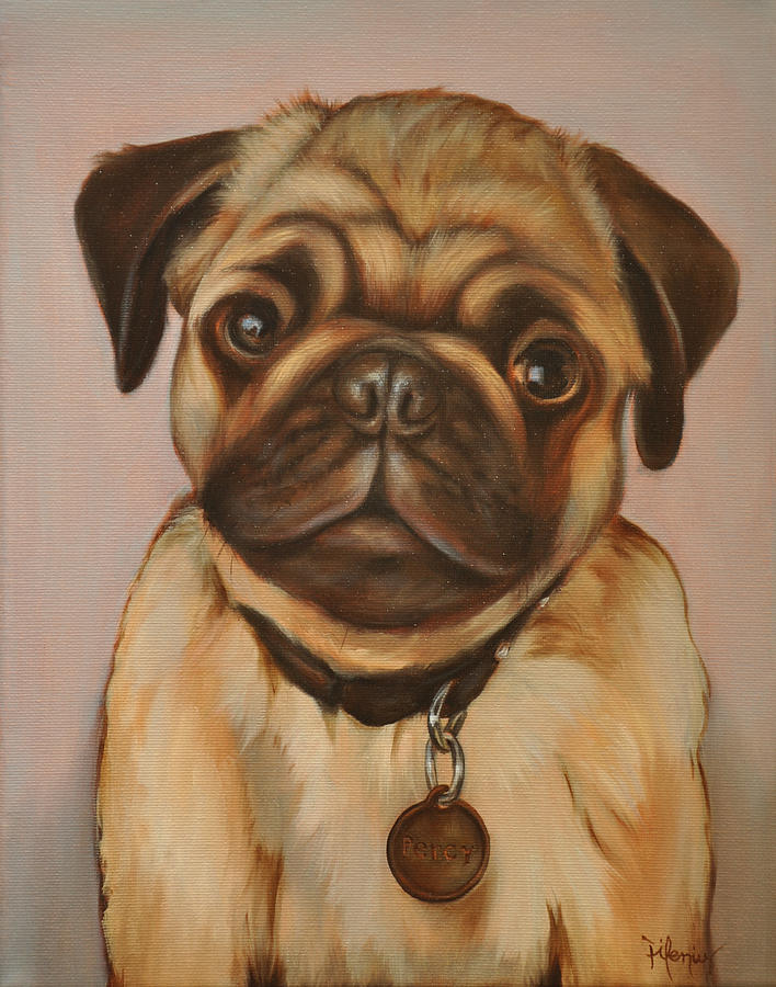 percy the pug percy the pug by jackson thilenius 9344