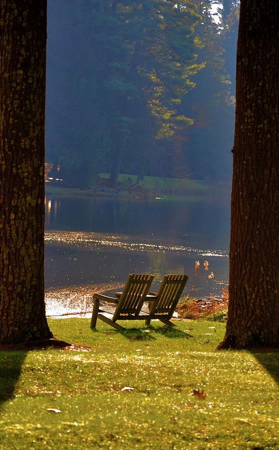 Bear Photograph - Perfect Morning Place by Bill Cannon