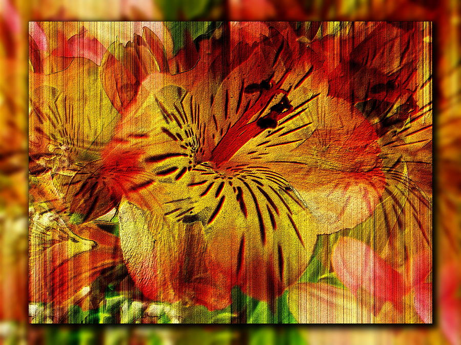 Petal Digital Art - Petal Paradigm by Tim Allen