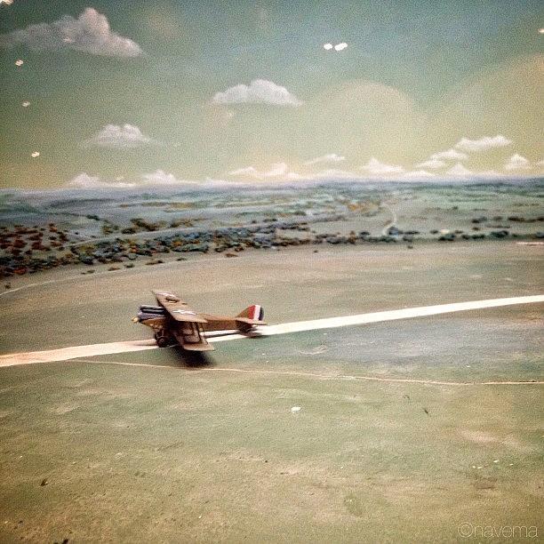 Miniatures Photograph - Petite Plane by Natasha Marco