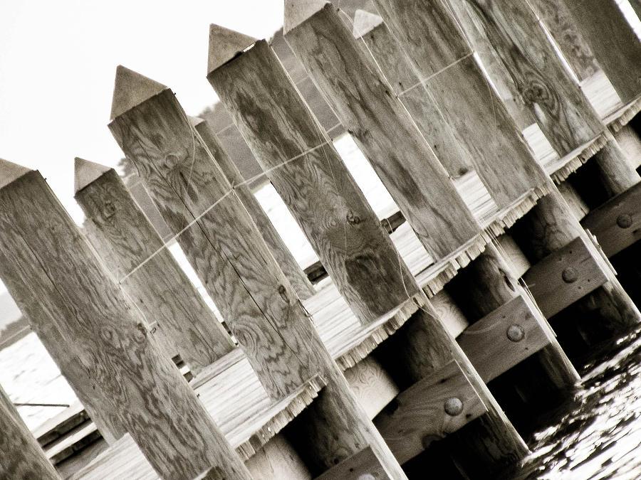 Phillies Photograph - Phillies Dock Halladay by Trish Tritz