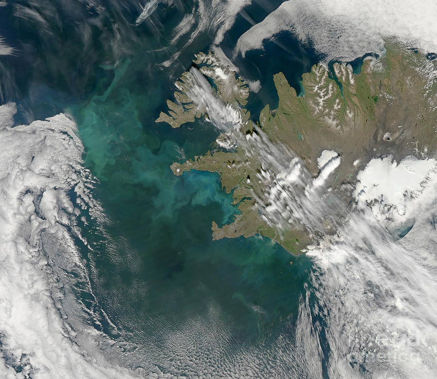 Phytoplankton Photograph - Phytoplankton Bloom In The North by Stocktrek Images