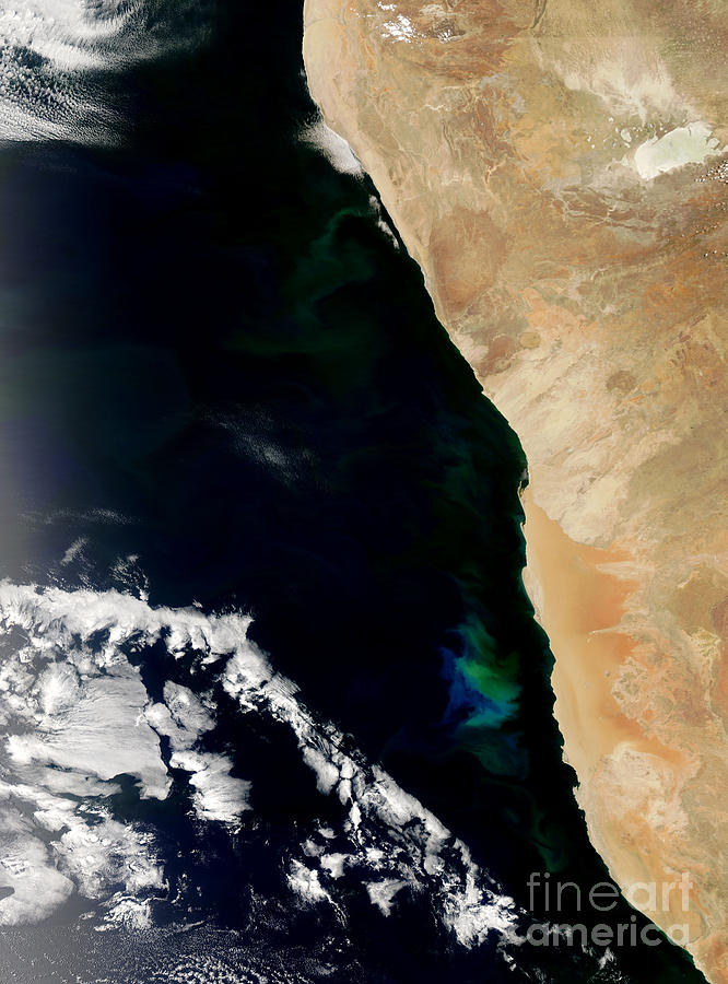 Phytoplankton Photograph - Phytoplankton Bloom Off Nambia by Nasa