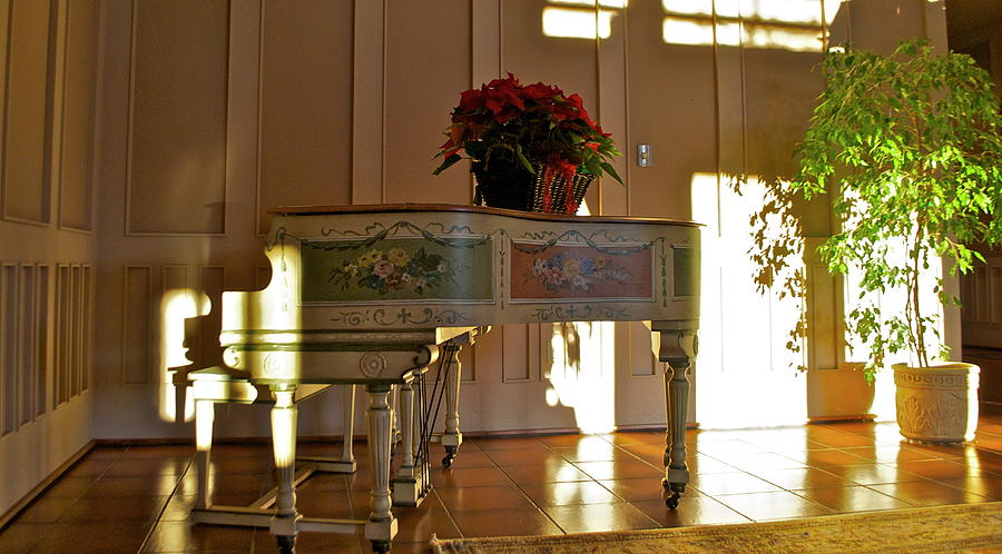 Piano in Light Photograph by Lori Leigh