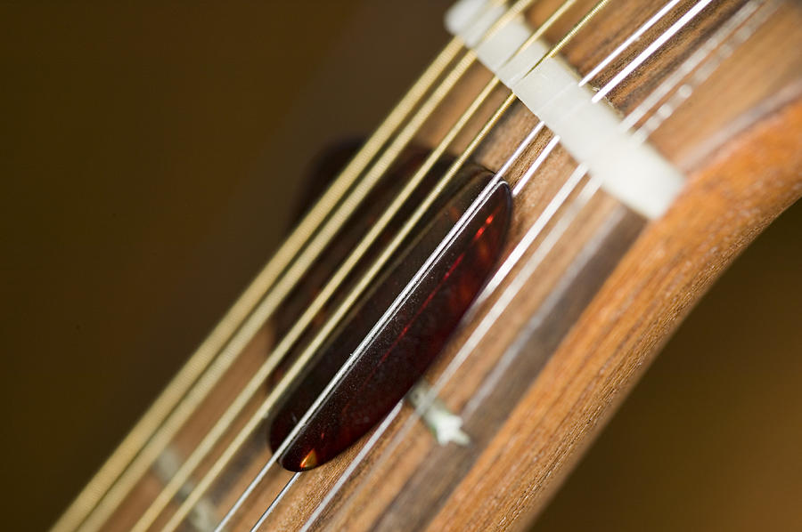 Musical Photograph - Pick by C Ribet