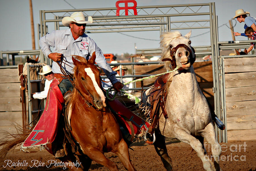 Rodeo Photograph - Pick Up Man by Rachelle Rice