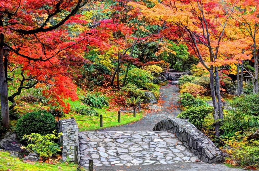 Japanese Garden Photograph - Piece Of Heaven by Sarai Rachel