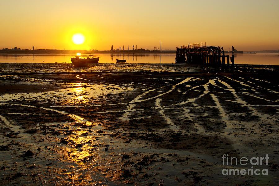 Algae Photograph - Pier At Sunset by Carlos Caetano
