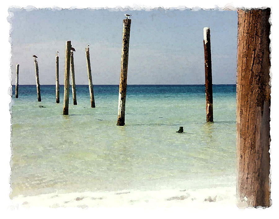 Beach Digital Art - Pier Pilings Destin Fla by Brenda Leedy