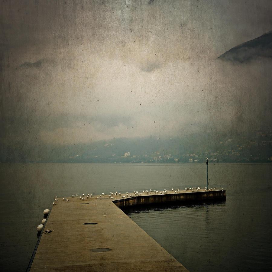 Bridge Photograph - Pier With Seagulls by Joana Kruse