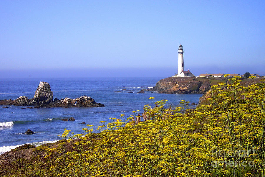 Pigeon Point Photograph - Pigeon Point Lighthouse California Coast by Mike Nellums