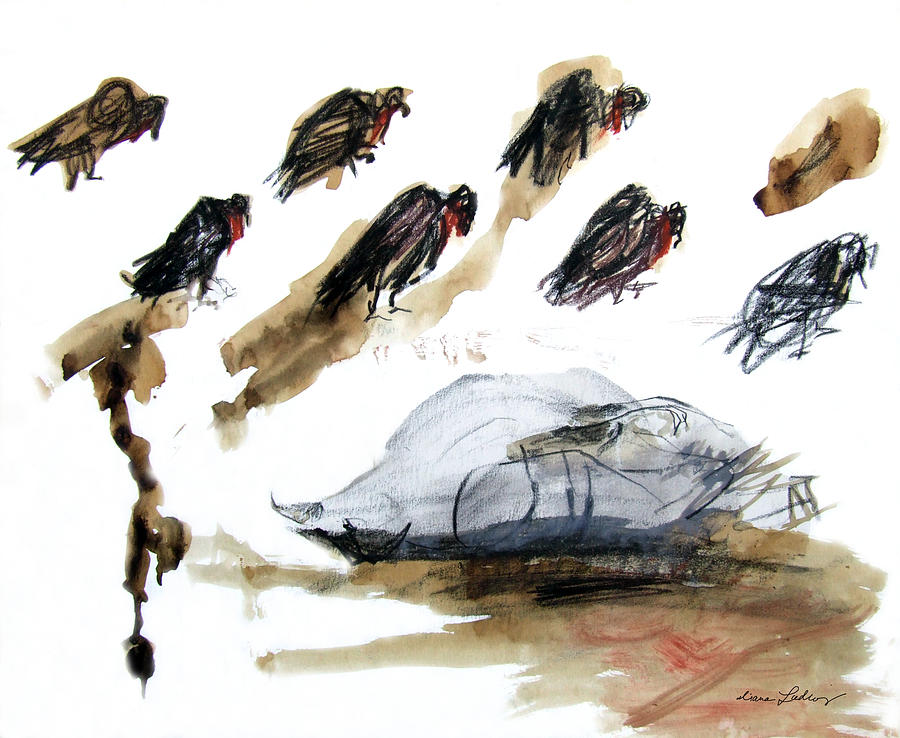 Pigeon Vultures by Diana Ludwig