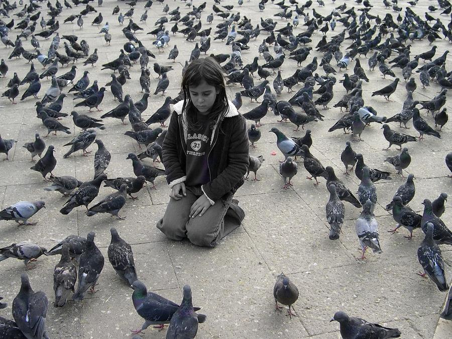 Pigeons In St. Marks Square Photograph by Paula Fishman