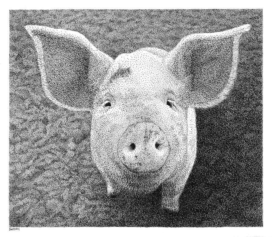 Piglet Drawing - Piglet by Scott Woyak