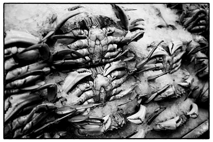 Pike Place Crab Photograph
