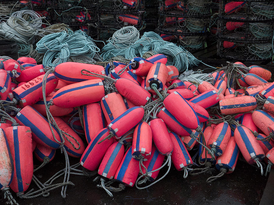 Fishing Photograph - Pile Of Pink And Blue Buoys by Carol Leigh