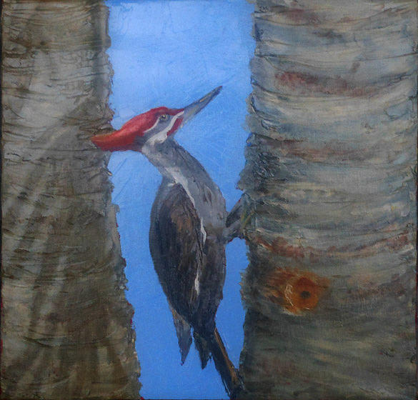 Wood Pecker Painting - Pileated Woodpecker by Libby  Cagle