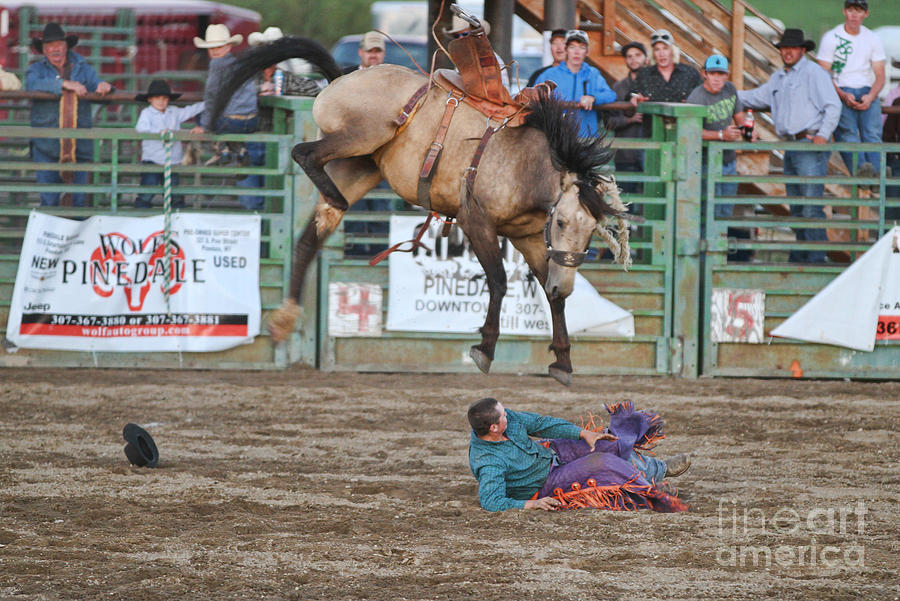 Rodeo Photograph - Piledriver by Edward R Wisell