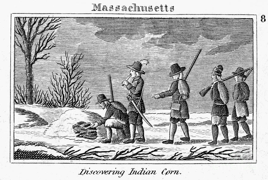 Pilgrims Native American Corn Photograph By Granger