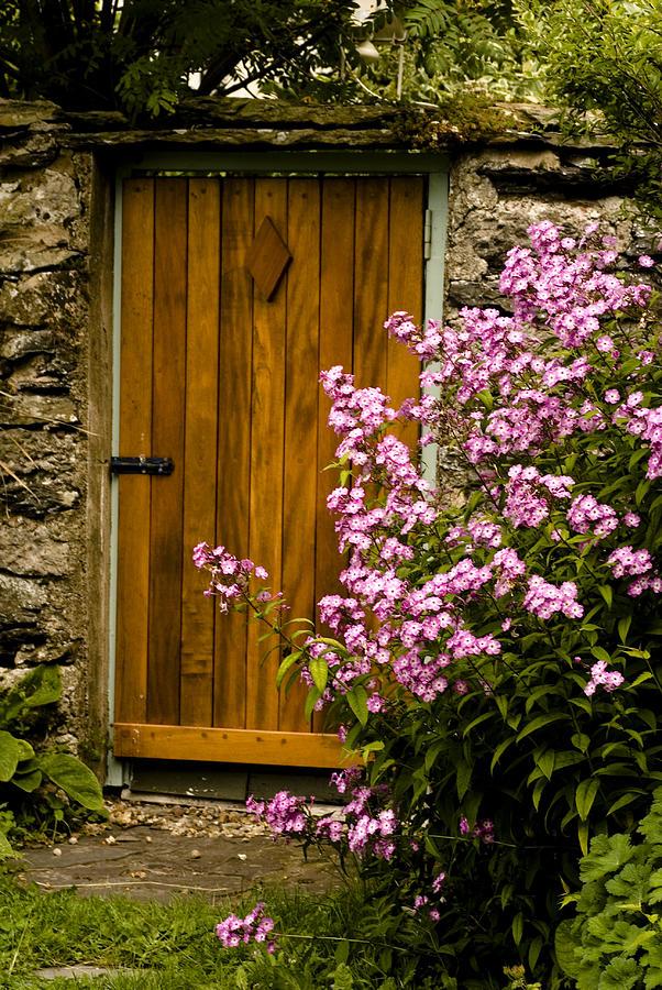 Pine Door Photograph by Peter Jenkins
