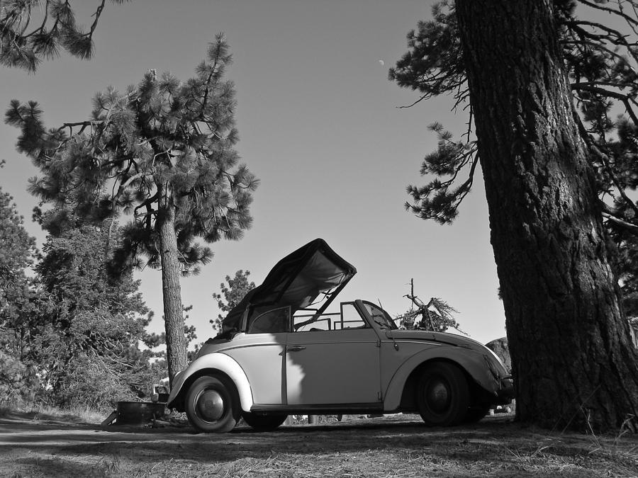 Automobile Photograph - Pine Mountain California by Ian Stevenson