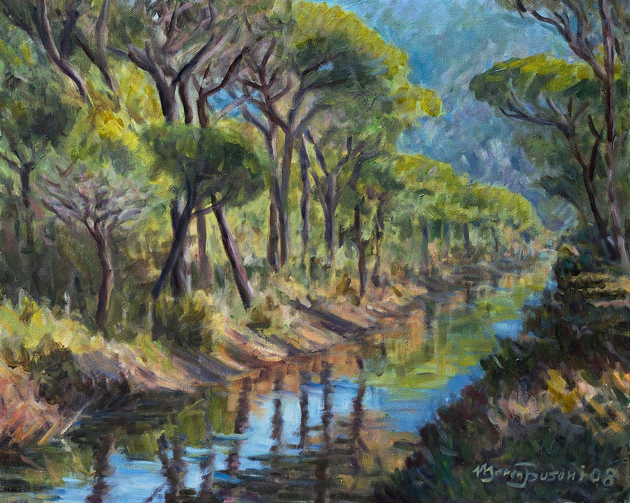 Pine Tree Mediterranean Wood Tuscany Maremma Canal Italy  Painting - Pine Wood Reflections by Marco Busoni
