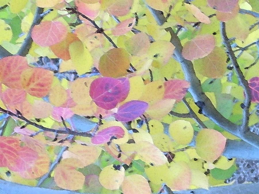 Abstract Digital Art - Pink Aspen Leaves by Bill Kennedy