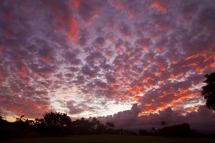 Pink Cloudy Sunset Photograph By Ron Dahlquist