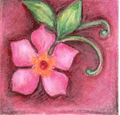 Pink flower drawing by judith correa flower drawing pink flower by judith correa mightylinksfo Images