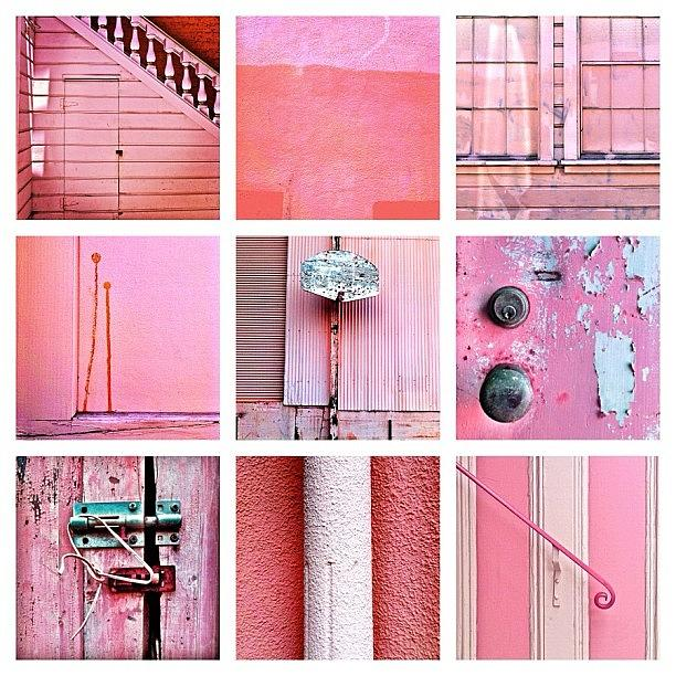 Pink Photograph - Pink  by Julie Gebhardt