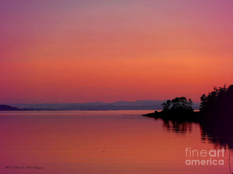 Sunrise Photograph - Pink Morn At Rock Point by Gail Bridger