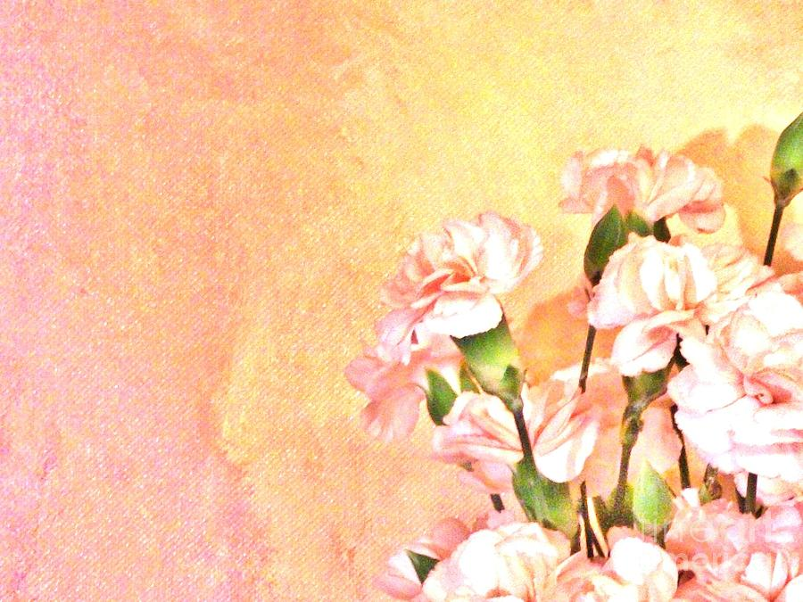 Photo Photograph - Pink On Yellow by Marsha Heiken