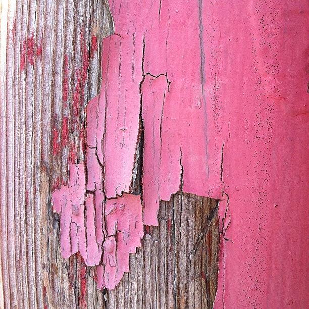 Pink Peeling Paint Photograph by Julie Gebhardt